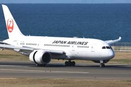 わんだーさんが、中部国際空港で撮影した日本航空 787-8 Dreamlinerの航空フォト(飛行機 写真・画像)