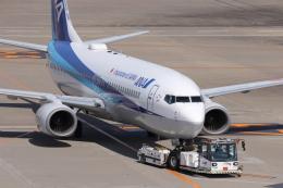 KAZFLYERさんが、羽田空港で撮影した全日空 737-881の航空フォト(飛行機 写真・画像)