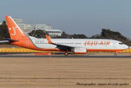 いおりさんが、成田国際空港で撮影したチェジュ航空 737-8Q8の航空フォト(飛行機 写真・画像)