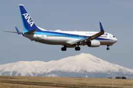 航空フォト:JA70AN 全日空 737-800