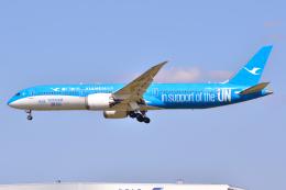 フリューゲルさんが、成田国際空港で撮影した厦門航空 787-9の航空フォト(飛行機 写真・画像)