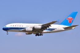 フリューゲルさんが、成田国際空港で撮影した中国南方航空 A380-841の航空フォト(飛行機 写真・画像)