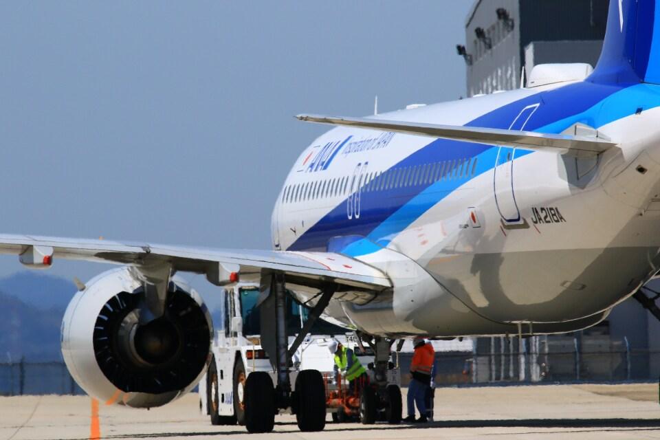 kazutoさんの全日空 Airbus A320neo (JA218A) 航空フォト