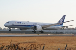 HEATHROWさんが、伊丹空港で撮影した全日空 787-9の航空フォト(飛行機 写真・画像)