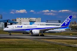 rokko2000さんが、伊丹空港で撮影した全日空 787-8 Dreamlinerの航空フォト(飛行機 写真・画像)