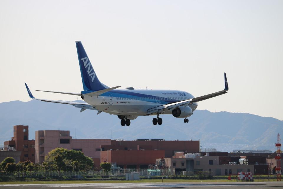 なかすぃ~さんの全日空 Boeing 737-800 (JA88AN) 航空フォト