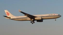 Garnet Worldさんが、成田国際空港で撮影した中国国際航空 A330-343Xの航空フォト(飛行機 写真・画像)