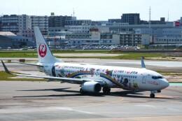 yoshibouさんが、福岡空港で撮影した日本トランスオーシャン航空 737-8Q3の航空フォト(飛行機 写真・画像)