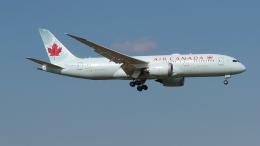 Garnet Worldさんが、成田国際空港で撮影したエア・カナダ 787-8 Dreamlinerの航空フォト(飛行機 写真・画像)