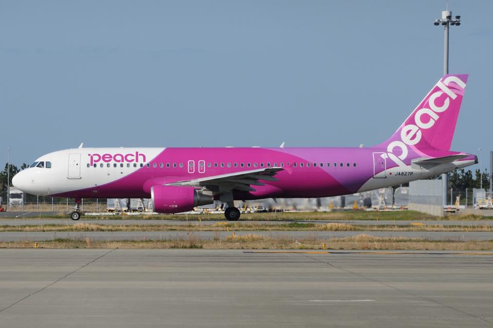 きんめいさんのピーチ Airbus A320 (JA827P) 航空フォト