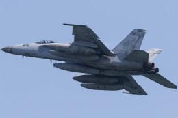 Koenig117さんが、岩国空港で撮影したアメリカ海軍 F/A-18E Super Hornetの航空フォト(飛行機 写真・画像)