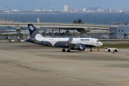 PW4090さんが、関西国際空港で撮影したオーロラ A319-111の航空フォト(飛行機 写真・画像)
