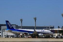 kazutoさんが、米子空港で撮影した全日空 A320-271Nの航空フォト(飛行機 写真・画像)
