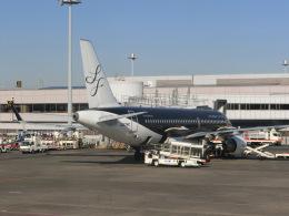 ヒロリンさんが、羽田空港で撮影したスターフライヤー A320-214の航空フォト(飛行機 写真・画像)