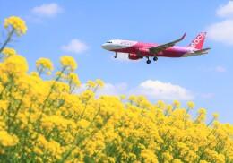 LOTUSさんが、成田国際空港で撮影したピーチ A320-214の航空フォト(飛行機 写真・画像)