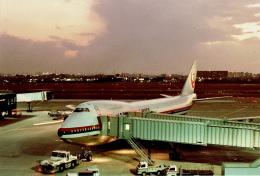 やまモンさんが、伊丹空港で撮影した日本航空 747-146B/SRの航空フォト(飛行機 写真・画像)