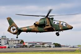 LUCHObyNOSAさんが、明野駐屯地で撮影した陸上自衛隊 OH-1の航空フォト(飛行機 写真・画像)