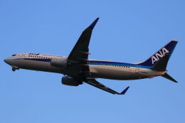 kengo.k@RJFTさんが、熊本空港で撮影した全日空 737-881の航空フォト(飛行機 写真・画像)