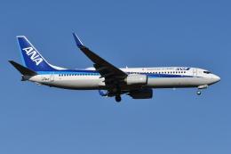 Deepさんが、成田国際空港で撮影した全日空 737-881の航空フォト(飛行機 写真・画像)