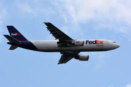 アルビレオさんが、成田国際空港で撮影したフェデックス・エクスプレス A300F4-605Rの航空フォト(飛行機 写真・画像)