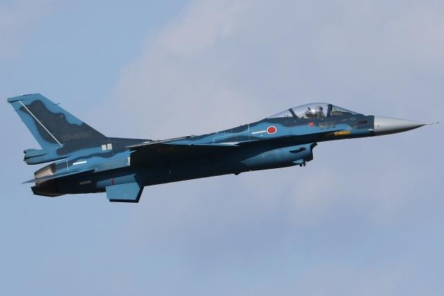 Wings Flapさんが、名古屋飛行場で撮影した航空自衛隊 F-2Aの航空フォト(飛行機 写真・画像)