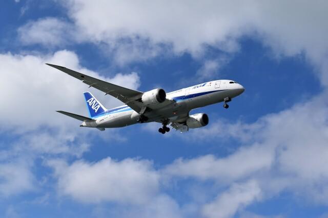 こじゆきさんが、那覇空港で撮影した全日空 787-8 Dreamlinerの航空フォト(飛行機 写真・画像)