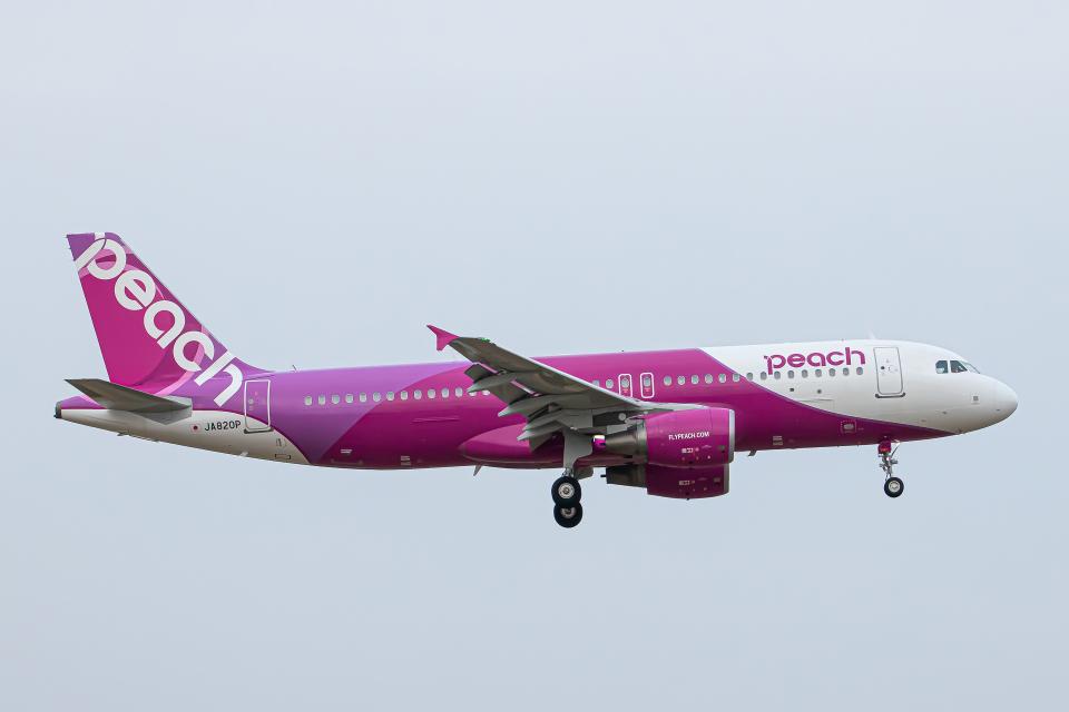 SGR RT 改さんのピーチ Airbus A320 (JA820P) 航空フォト