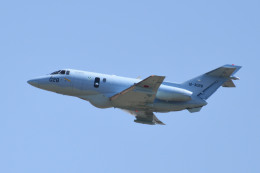れぐぽよさんが、小松空港で撮影した航空自衛隊 U-125A(Hawker 800)の航空フォト(飛行機 写真・画像)