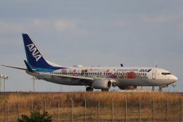 imosaさんが、羽田空港で撮影した全日空 737-881の航空フォト(飛行機 写真・画像)