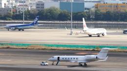 誘喜さんが、羽田空港で撮影したSpringfield Aircraft Charter and Sales Inc. G-Vの航空フォト(飛行機 写真・画像)