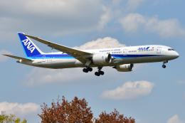 saoya_saodakeさんが、成田国際空港で撮影した全日空 787-9の航空フォト(飛行機 写真・画像)