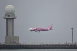JUTENさんが、中部国際空港で撮影したピーチ A320-214の航空フォト(飛行機 写真・画像)
