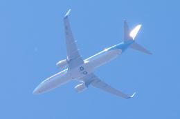 yabyanさんが、ブリュッセル国際空港で撮影したジェットエアフライ 737-8K5の航空フォト(飛行機 写真・画像)