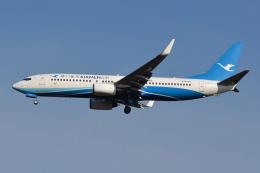 Deepさんが、成田国際空港で撮影した厦門航空 737-86Nの航空フォト(飛行機 写真・画像)