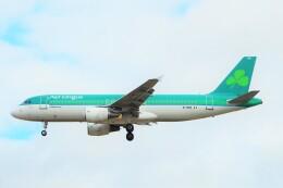 ちっとろむさんが、ロンドン・ヒースロー空港で撮影したエア・リンガス A320-214の航空フォト(飛行機 写真・画像)