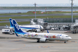 sakaki787さんが、羽田空港で撮影した全日空 737-881の航空フォト(飛行機 写真・画像)