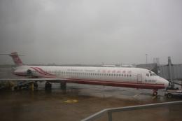 S.Hayashiさんが、台湾桃園国際空港で撮影した遠東航空 MD-83 (DC-9-83)の航空フォト(飛行機 写真・画像)