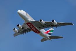 gomaさんが、ミュンヘン・フランツヨーゼフシュトラウス空港で撮影したエミレーツ航空 A380-842の航空フォト(飛行機 写真・画像)