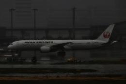 M.airphotoさんが、羽田空港で撮影した日本航空 787-9の航空フォト(飛行機 写真・画像)