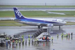 のんきな人さんが、羽田空港で撮影したANAウイングス 737-54Kの航空フォト(飛行機 写真・画像)