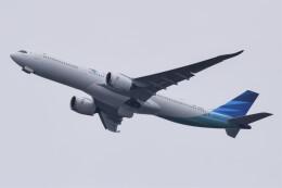 のんきな人さんが、羽田空港で撮影したガルーダ・インドネシア航空 A330-941の航空フォト(飛行機 写真・画像)
