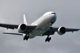 こじゆきさんが、那覇空港で撮影した日本航空 777-289の航空フォト(飛行機 写真・画像)