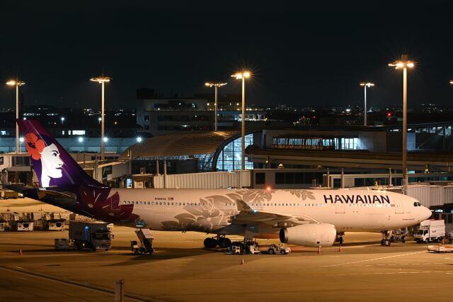 天心さんが、関西国際空港で撮影したハワイアン航空 A330-243の航空フォト(飛行機 写真・画像)
