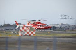 hikaruphotographさんが、名古屋飛行場で撮影した中日本航空 430の航空フォト(飛行機 写真・画像)