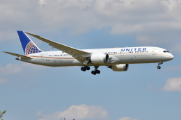 saoya_saodakeさんが、成田国際空港で撮影したユナイテッド航空 787-9の航空フォト(飛行機 写真・画像)