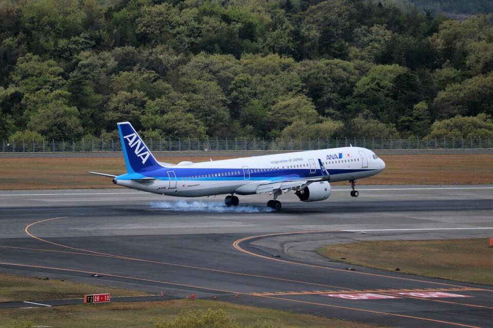 ヒロジーさんの全日空 Airbus A321neo (JA141A) 航空フォト
