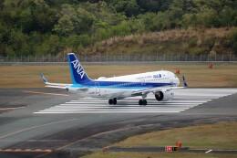 ヒロジーさんが、広島空港で撮影した全日空 A320-271Nの航空フォト(飛行機 写真・画像)