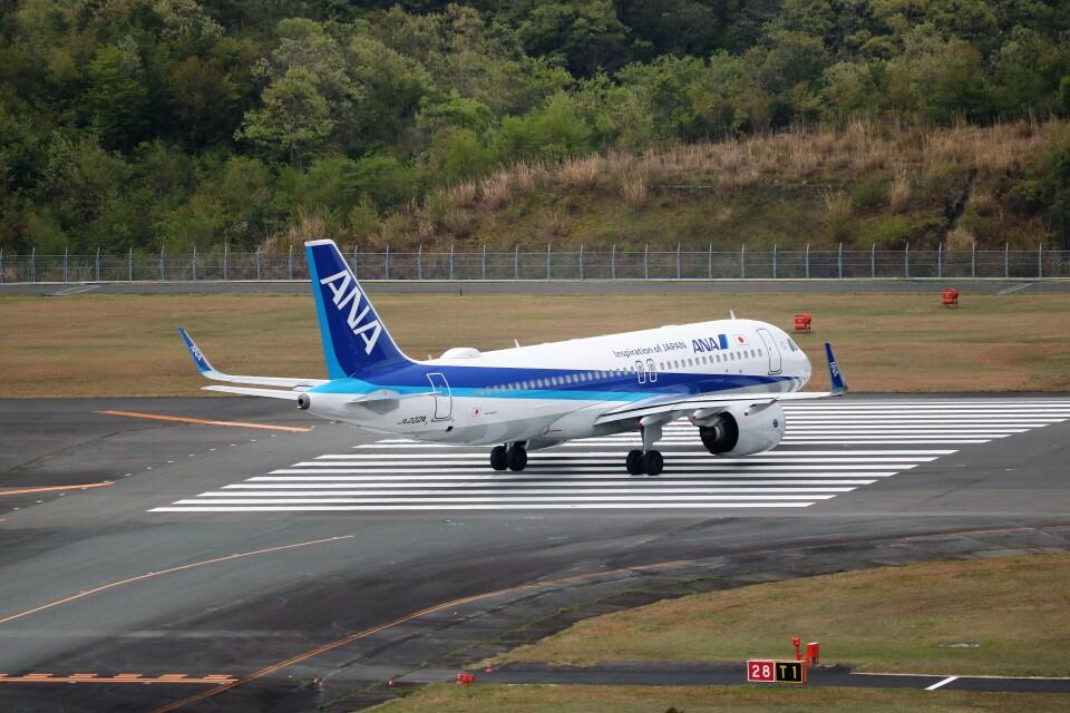 ヒロジーさんの全日空 Airbus A320neo (JA222A) 航空フォト