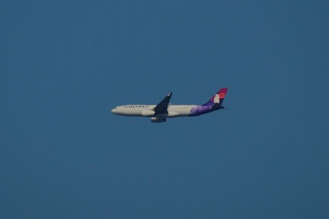 NFファンさんが、厚木飛行場で撮影したハワイアン航空 A330-243の航空フォト(飛行機 写真・画像)