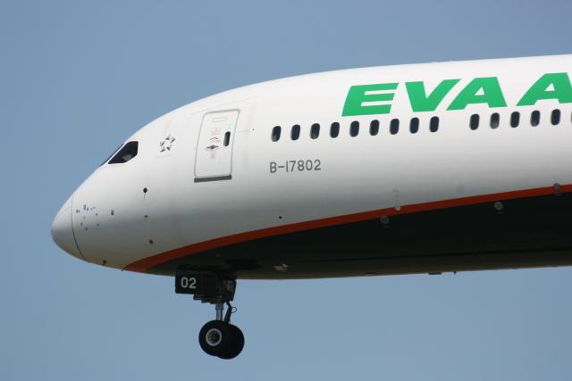 西麻布と焼売弁当さんが、成田国際空港で撮影したエバー航空 787-10の航空フォト(飛行機 写真・画像)